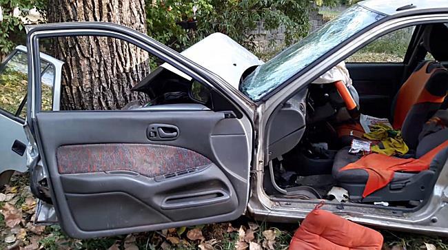 Fának hajtott egy Suzuki Miskolcon  - boon.hu